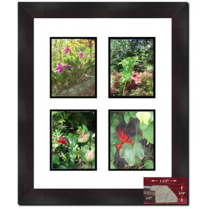 Darby Home Co Boatner Stepped Mahogany Picture Frame FBM2133
