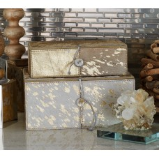 Cole Grey 2 Piece Decorative Box Set CLRB1864