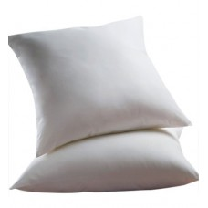 Alwyn Home Euro Pillow ANEW2196
