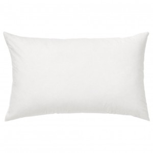 Alwyn Home Grise Pillow Insert OBSN1007