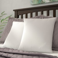 Alwyn Home White Super Soft Pillow Insert with Protectors ANEW2145