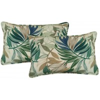 Beachcrest Home Arin Indoor/Outdoor Lumbar Pillow BCMH2713