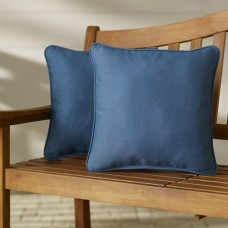 Beachcrest Home Paulino Outdoor Throw Pillow SEHO4500